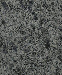 dolphin granit